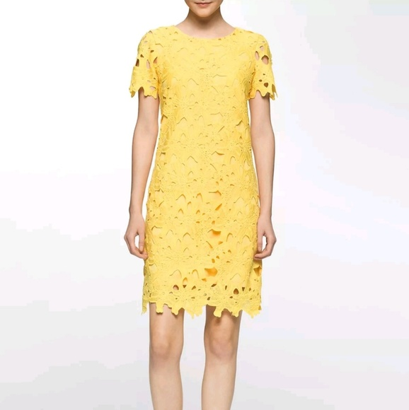 1161a3756588 Calvin Klein Floral Eyelet Lace Sheath Dress